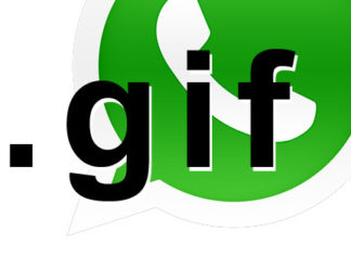 Whatsapp è pronto ad essere invaso dalle GIF animate