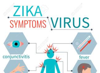 virus zika, i sintomi e le cure