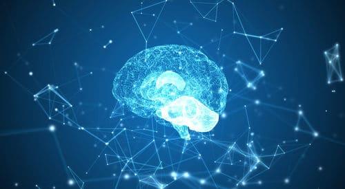 Il cervello è attivo anche dopo la morte