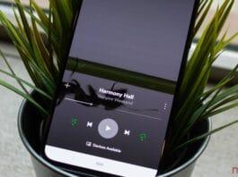 Canvas Video Spotify rimozione