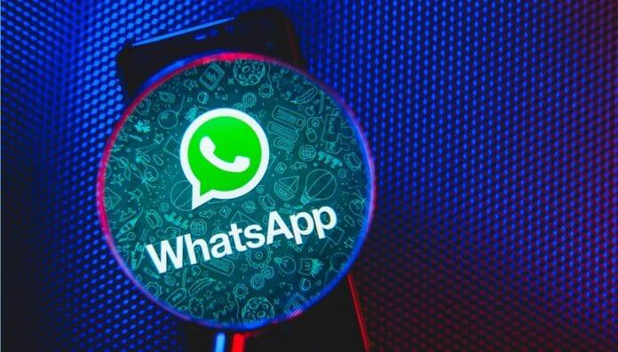 Whatsapp Multi Dispositivo attivare