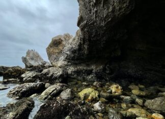 Foto iPhone 12 Pro lente ultra Wide